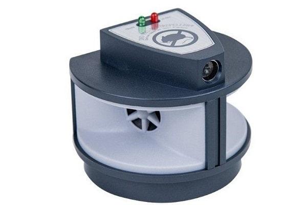 מכשיר שמגרש את העכברים והחולדות מהבית והחצר